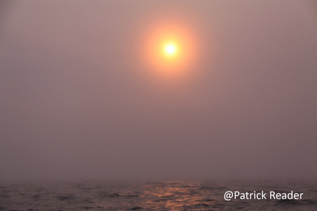 Patrick Reader Arctic fog