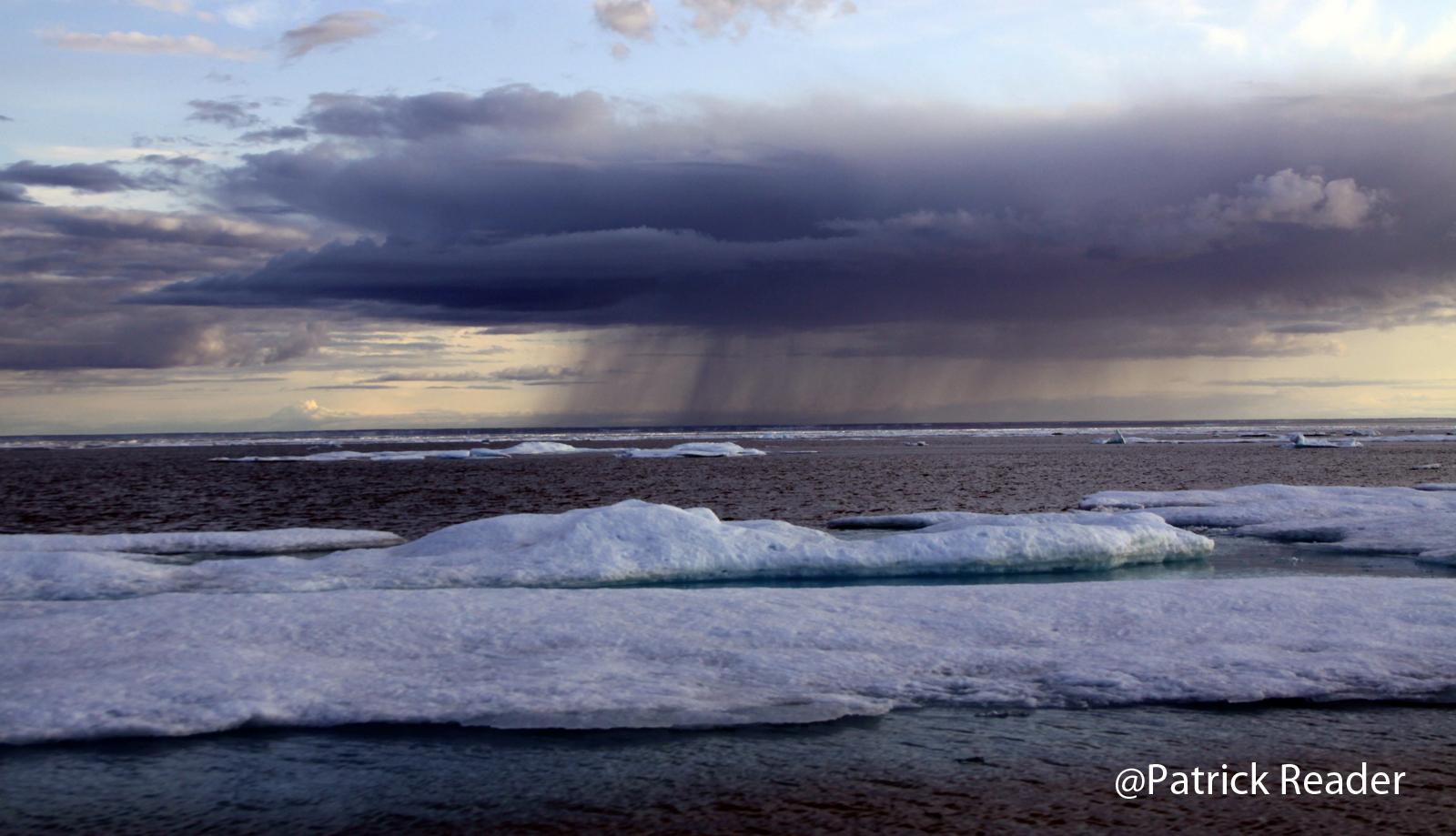 The Arctic Grey Zone!