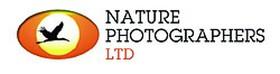 ?Estás Buscando Las Mejores Fotografías Sobre La Naturaleza?