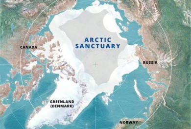 greenpeace save the arctic