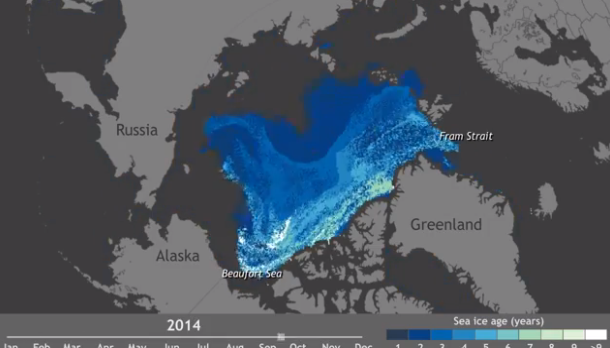 arctic sea ice - banquise arctique - arctic ocean - bye bye the arctic - polar bears