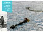 arctic margins, arctic margins conference, international arctic conference, arctic research, trondheim, norway, arctic science, arctic symposium, arctic researchers, north pole conference, confèrence sur l'arctique