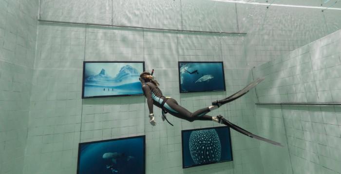 fred buyle, uccle, nemo 33, exposition photo, belge, plongée, apnée, piscine, bruxelles, nemo, requin, poisson, nageur, hobby, photographie de plongée, diving