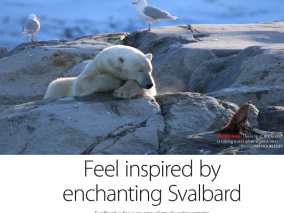 Feel inspired by Svalbard!