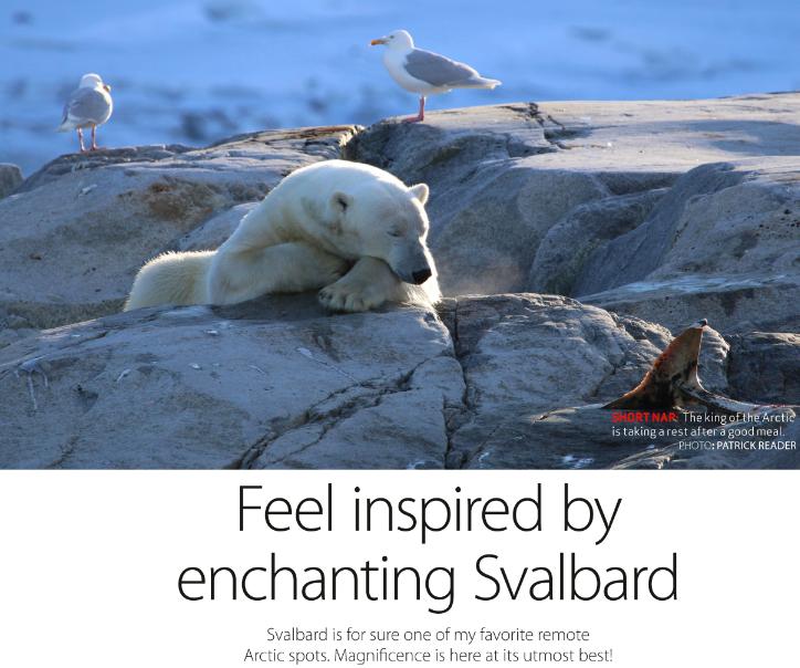 Patrick Reader, Svalbard, Arctic expert, polar bears, spizbergen,dolphins, wildlife photographer, the arctic, l'Arctique, feel inspired, arctic beauties, arctic flora, walrus, arctic05, arctic news, arctic4ever