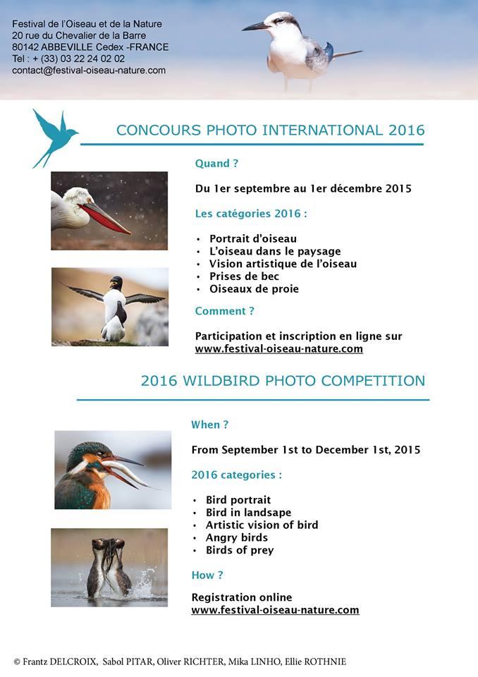 Festival de l'Oiseau et de la Nature, Baie de Somme, bird photographer competition, France, beautiful birds pictures, photo contest, image de Nature, photos d'oiseaux, photo contest