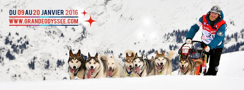 La Grande Odyssée 2016, chiens de traîneaux, alaskian, alpes françaises, nicolas vanier, French Alpes, arctic05, dogs and snow, aventure, l'homme et les chiens, musher