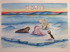 Nanouk, baby girl name, Bienvenida Nanouk Reader, Arctic05, Inuit, girls name, prénom fille, ours polaire, 欢迎,polar bear, arctic4ever, ice, seal, puffin, nature