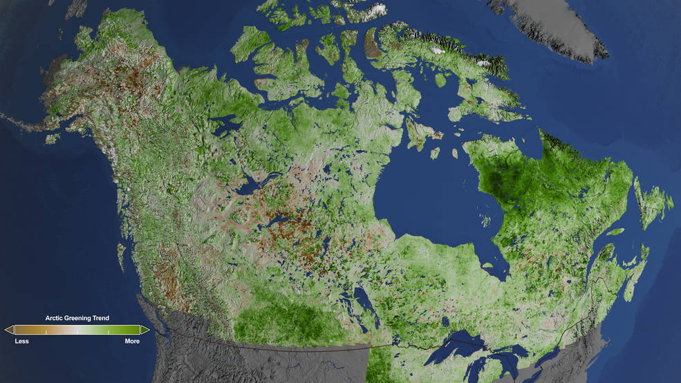 NASA et l'Arctique, Toundra, NASA Studies Details of a Greening Arctic, Goddard Space Flight Center, Cindy Starr, Quebec, Labrador, Canada, Alaska, Nunavut