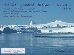 voilier en acier Fredoya, découverte du groenland à la voile, été 2018, baie de disko, baleine, icebergs, ilulissat, unesco, phoques, oiseaux, upernavik, uummannaq, croisière