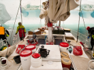 voilier polaire aluminium, WHY, Under the pole, exploration sous-marine, plongée, arctique, voile,  goélette, diving, antarctique, arctic05, plongeur, dauphins, baleines, glace, expédition polaire