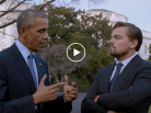 Leonardo DiCaprio, Before the Flood, Climate change, Barack Obama, Avant le déluge, Arctic05, Martin Scorsese, National Geographic, Arctic4Ever, Nature, Act Now
