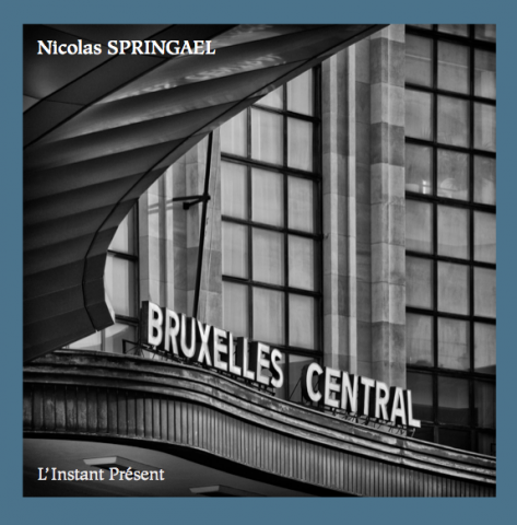 Nicolas Springael, Bruxelles, Livre, Bruxelles Central, L'Instant Présent