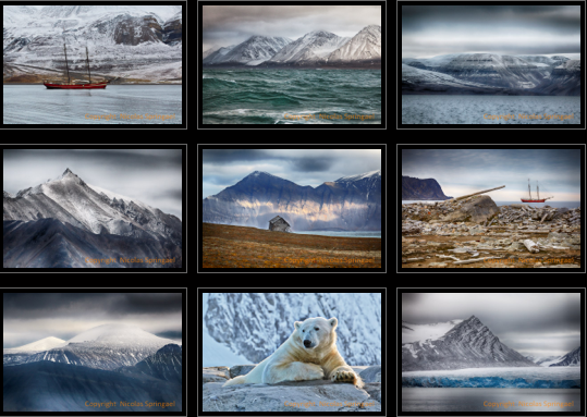 Nicolas Springael, Photographie, Images Svalbard, Spitzbergen, Arctic05, Bruxelles, Gallerie Photos, Le Sablon, L'Instant Présent