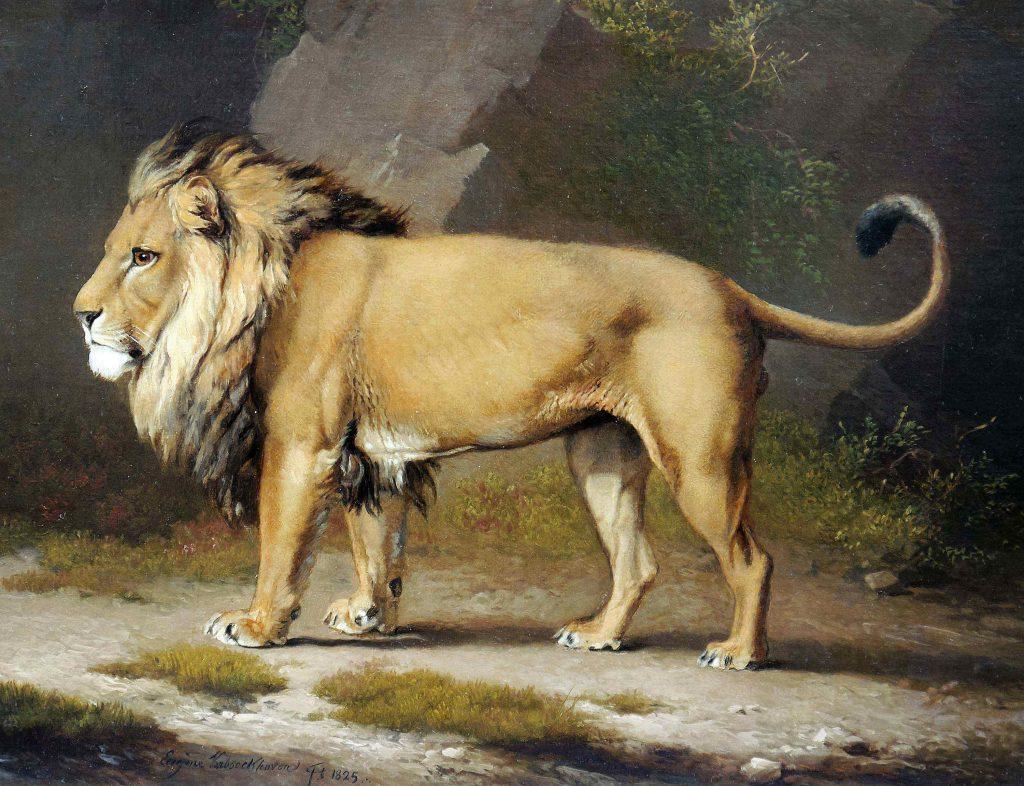 Lion painting, Brafa Art Fair, Arctic05, peinture animalière, Eugène Verboeckhoven, Belgium, Brussels, Philippe Heim, lion d'Afrique