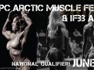 Arctic muscle fest, Alaska muscle, Anchorage, 2017 IFBB Arctic Pro Men's 212 & Women's Physique, USA, Arctic05, sports and fitness, musculation, body building, bikini