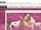 Musée canadien de la nature, galerie permanente de l'Arctique Canada Goose, Arctic05, Grand Nord canadien, Nunavut, Inuit, culture, ours polaire, eskimo power