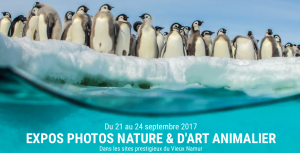 Expos photos Nature et Animalier