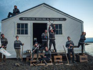 https-::teamshrub.wordpress.com, Tundra Ecology Lab, Herschel island, Yukon, Canada, Arctic, vegetation, tundra, ecologist, arctic and alpine shrub research