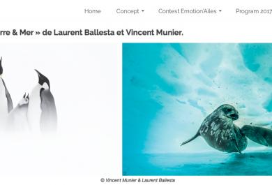 Exposition « Adélie-Terre & Mer » de Laurent Ballesta et Vincent Munier, Arctic05, Antarctique, film et photos polaires, iceberg, oiseaux, océan, faune et flore
