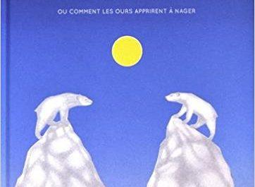 livre polaire, La divergence des icebergs, Aline Deugen, glaces, Arctic05, banquise, ours polaire, soleil de minuit, changement climatique, fonte des glaces