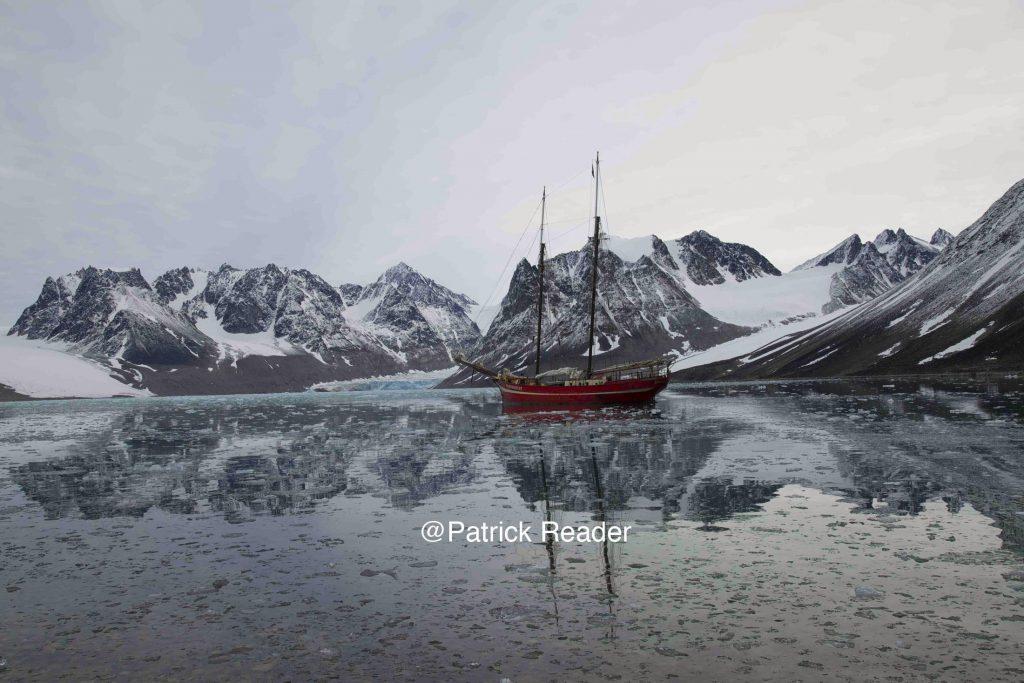 Patrick Reader Photography, Noorderlicht, Svalbard, Spitzberg, voile au Spitsbergen, goélette polaire, glace, ours, voyage, expédition, bateau,Arctic05, faune et flore, Baie de la Madeleine