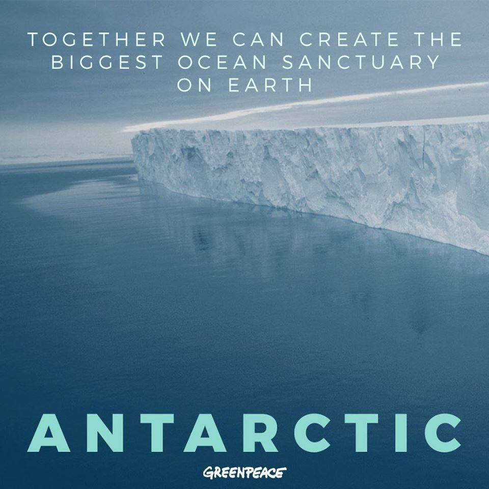 Antarctic, greenpeace, together, wildlife sanctuary, Save South Pole, Iceberg, whales, ocean, protected area, Yes, we can, Greenpeace UK, Arctic, pollution, plastic